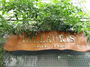 Vallaurisraris